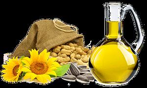 Shampoo with sunflower oil